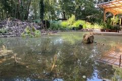 Ortswechsel: Ab jetzt immer der Blick über unseren neuen Teich. (08.08.2020)