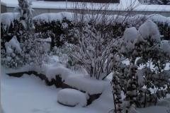 Foto1166