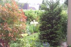 Blick vom Hof in den Garten